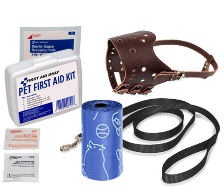 safety kit1