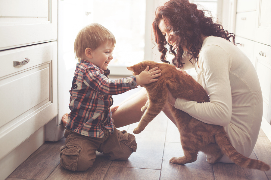 Mother and her baby playing with cat