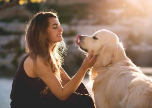 Beauty woman with her pet - dog golden retriever playing outdoors.