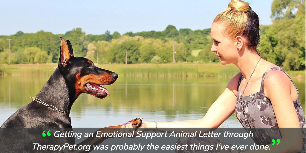 how to get an emotional support animal  dog  in 2019