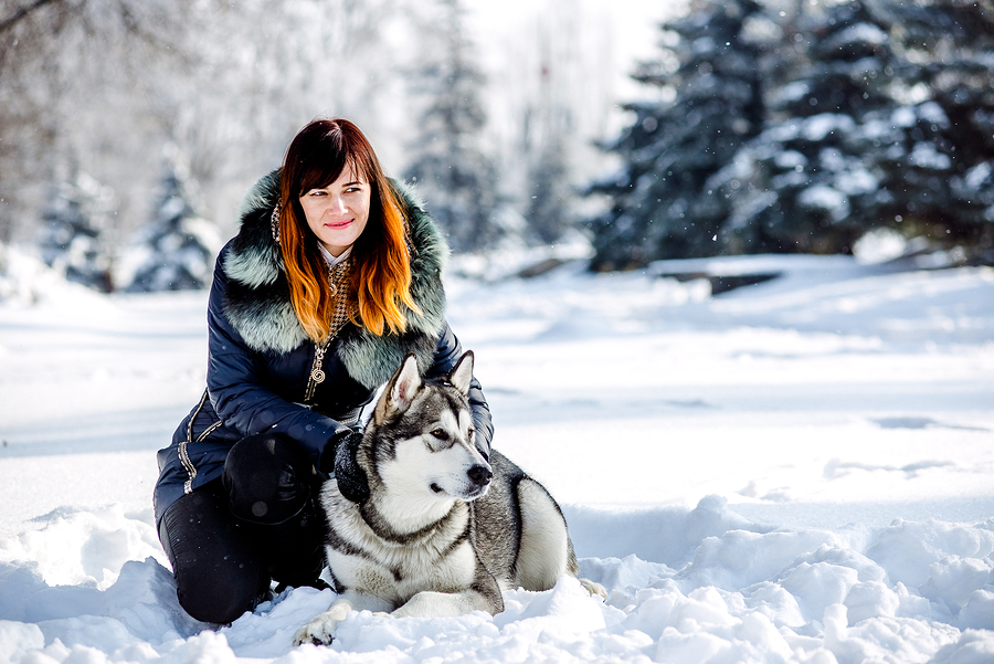 Keeping Your Emotional Support Dog Healthy During The Winter