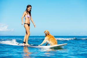 Attractive Young Woman Surfing with her Dog. Riding Wave Togethe