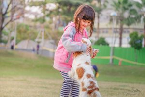 introduce kid playing with dog