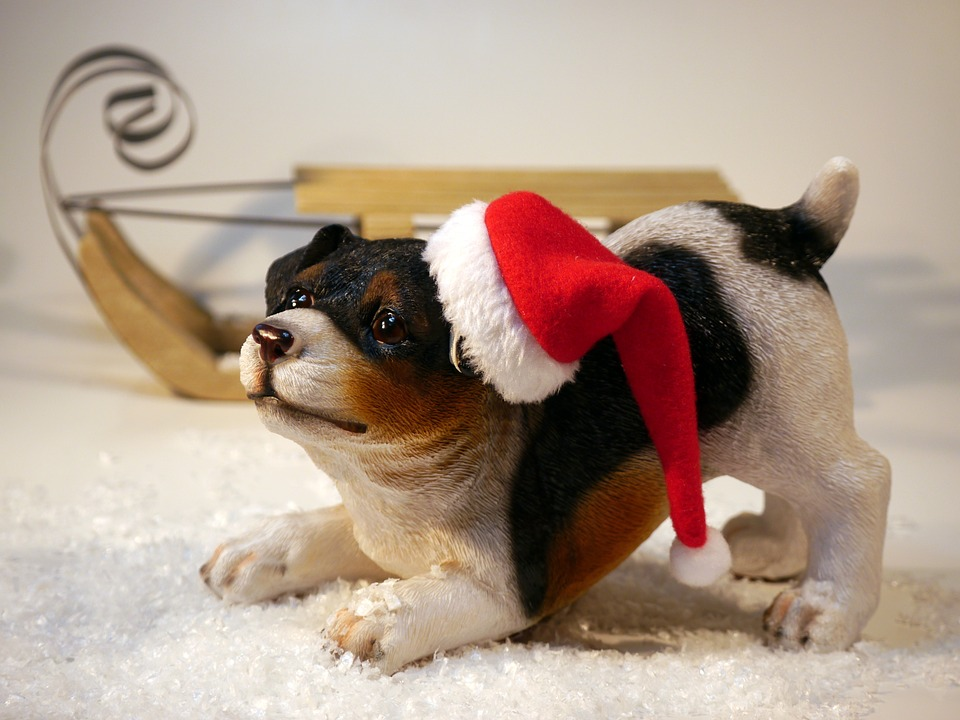 Tips for Pet-Proofing Your Holiday Decorations