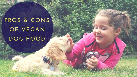 The Pros & Cons of Vegan Dog Food