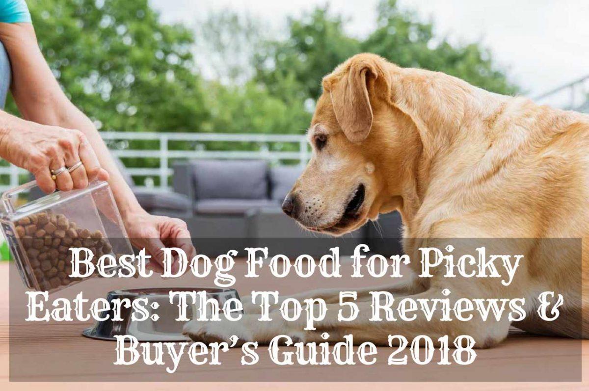 Best-Dog-Food-for-Picky