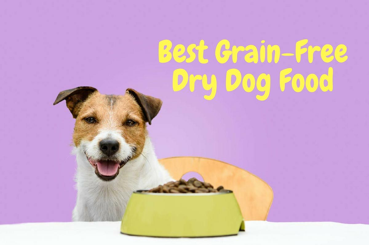 Best-Grain-Free-Dry-Dog-Food