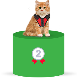 #2 Most Common Emotional Support Animal - Cats
