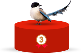 #3 Most Common Emotional Support Animal - Birds