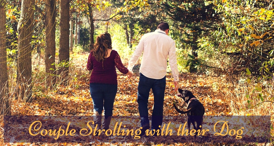 Couple Strolling with their Dog in the park