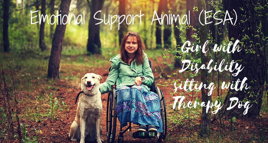 Girl with Disability sitting with Therapy Dog