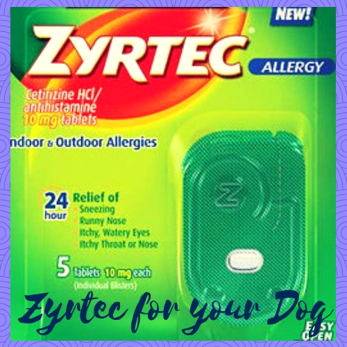 Zyrtec for your Dog