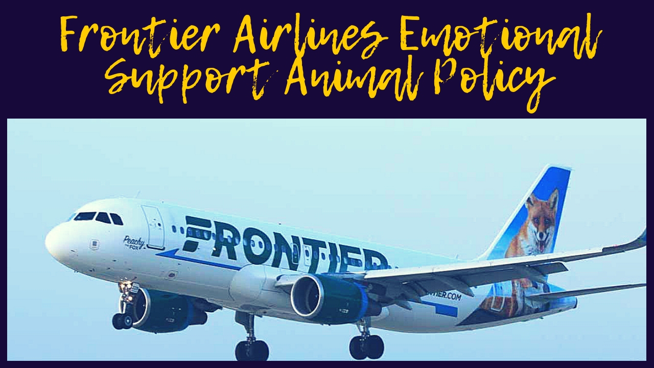 Frontier Airlines Emotional Support Animal Policy