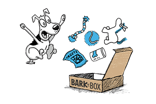 How to Order BarkBox