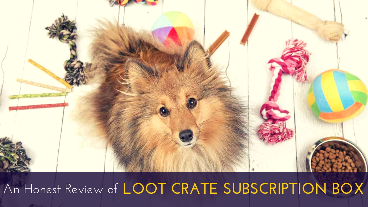 Loot Crate Subscription Box Review