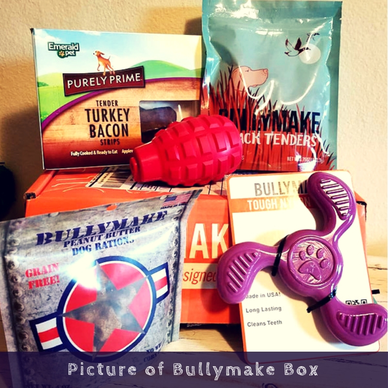 Picture of Bullymake Box