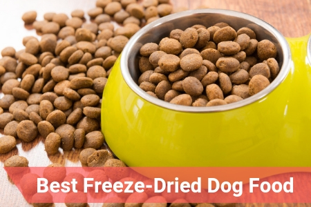 Best Rated Dog Food >> Top Rated Freeze Dried Dog Food Of 2019 Therapy Pet