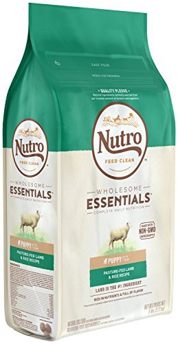 Dry Dog Food Wholesome Essentials Puppy