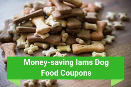 Money-saving Iams Canine Food Insights