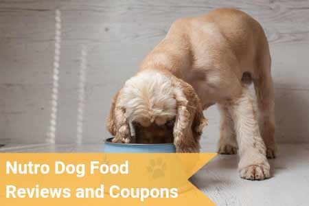 Nutro Dog Food Reviews and Coupons