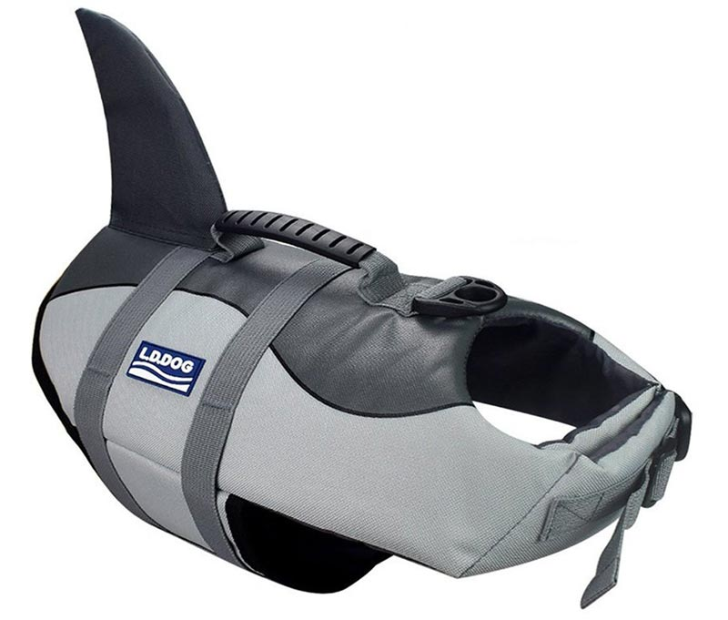 A-MORE Dog Life Jacket