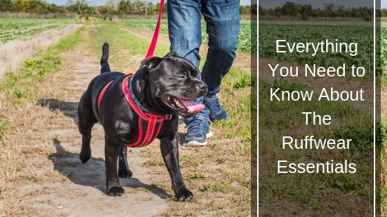 Ruffwear Essentials