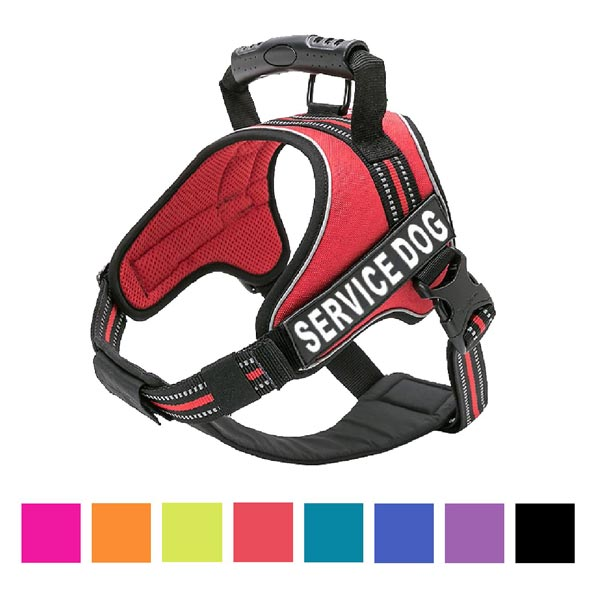 Chai's Choice Service Dog Vest Harness