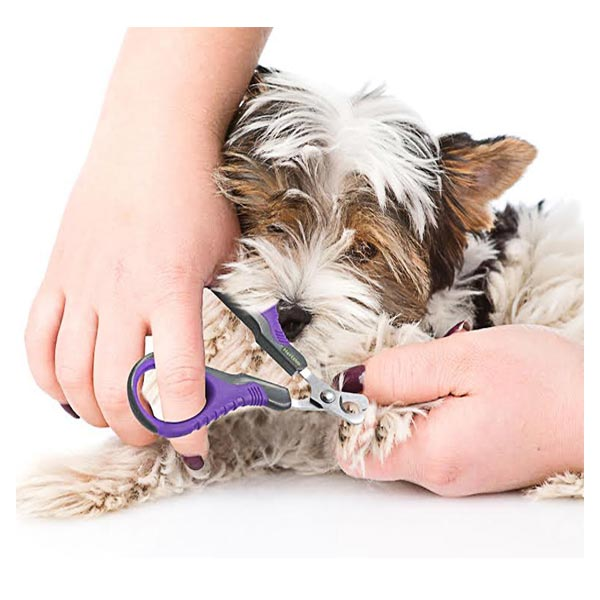 Hertzko Angled Blade Dog, Cat, & Small Pet Nail Scissors