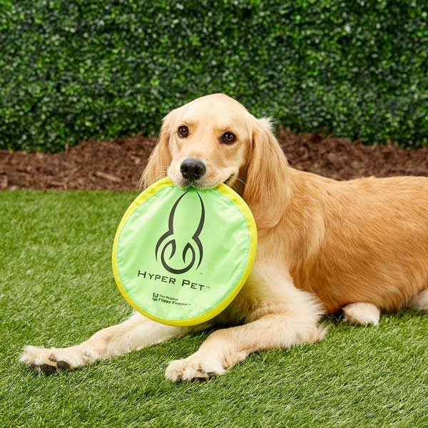 Hyper Pet Flippy Flopper Fying Disc Dog Toy