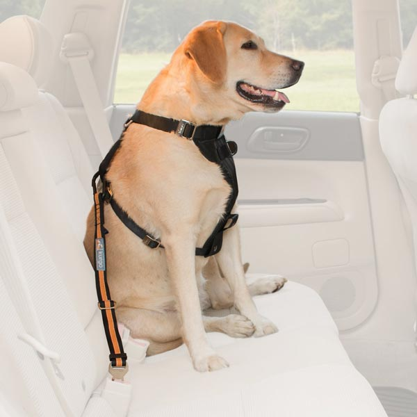 Kurgo Direct to Seat-Belt Tether