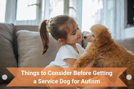 Things to Consider Before Getting a Service Dog for Autism
