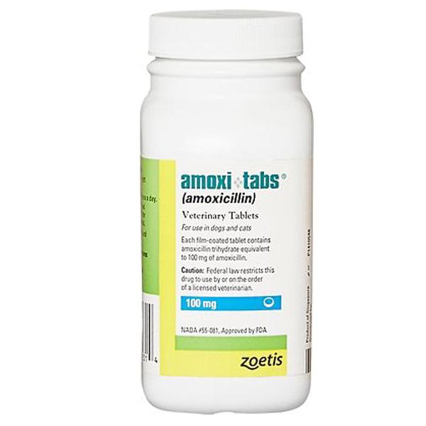 Amoxi-Tabs (Amoxicillin) Tablets for Dogs & Cats