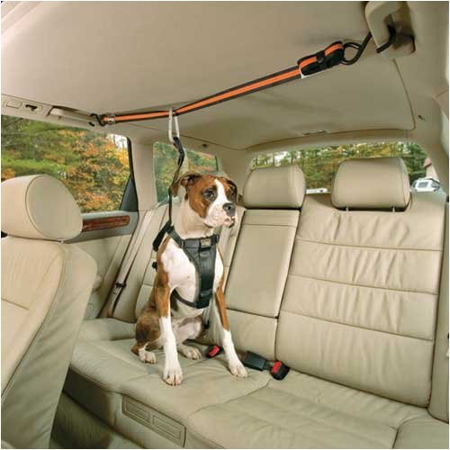 Kurgo Automobile Zip-Line for Dogs