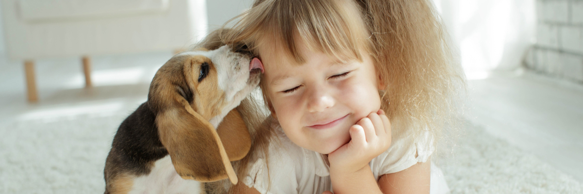 Dog Breeds That Make Great Pets