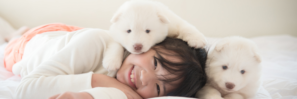 What is the Best Pet for Beginners